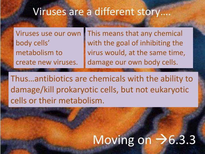 Viruses use our own body cells' metabolism to create new viruses.