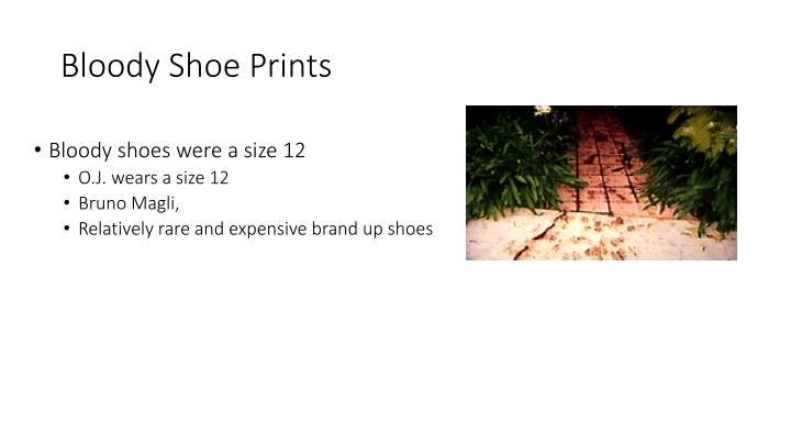 Bloody Shoe Prints