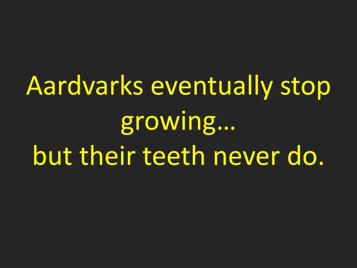 Aardvarks eventually stop growing…