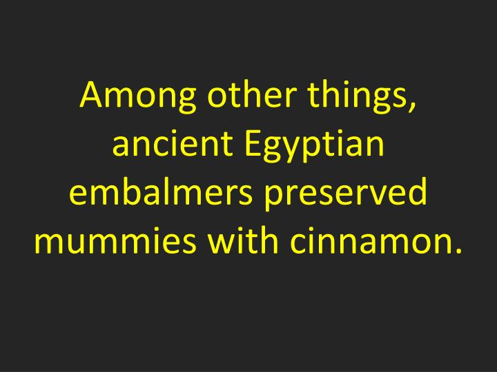 Among other things, ancient Egyptian embalmers preserved mummies with cinnamon.