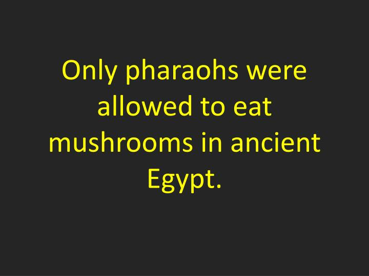 Only pharaohs were allowed to eat mushrooms in ancient Egypt.