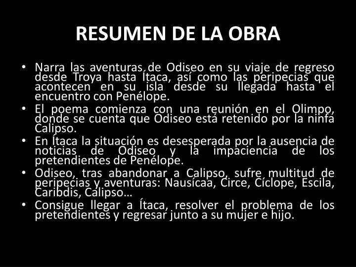 RESUMEN DE LA OBRA