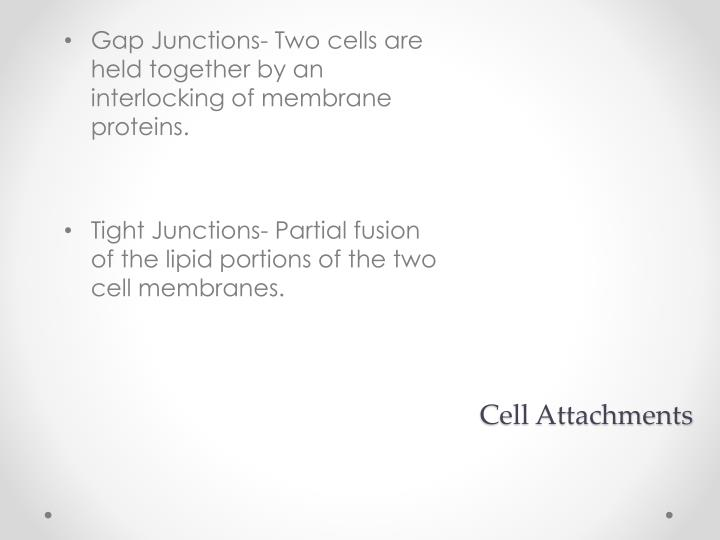 Cell Attachments