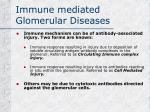 immune mediated glomerular diseases