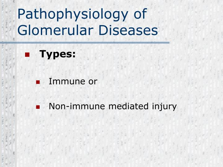Pathophysiology of Glomerular Diseases