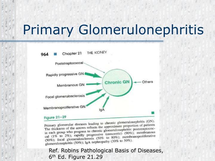 Primary Glomerulonephritis