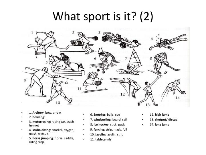 What sport is it? (2)