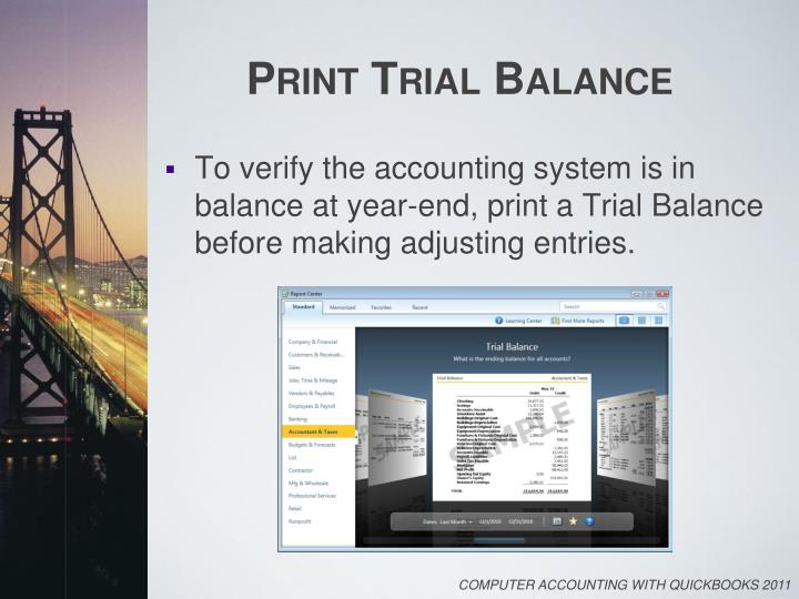 Print Trial Balance