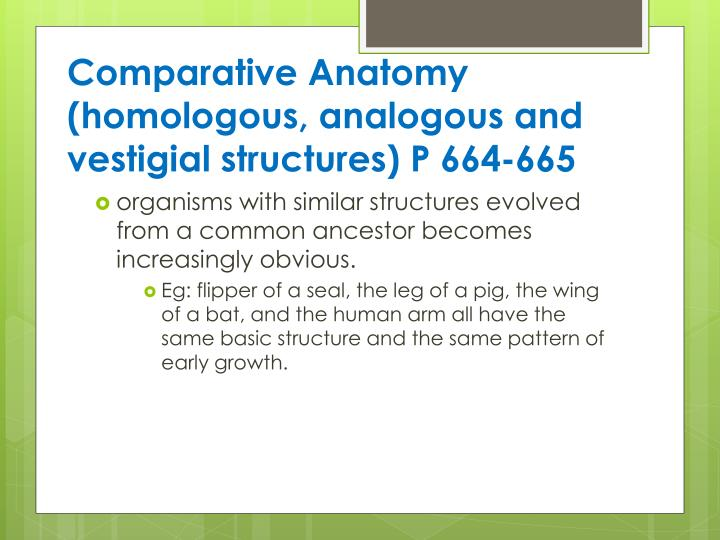 Comparative Anatomy (homologous, analogous and vestigial structures) P 664-665