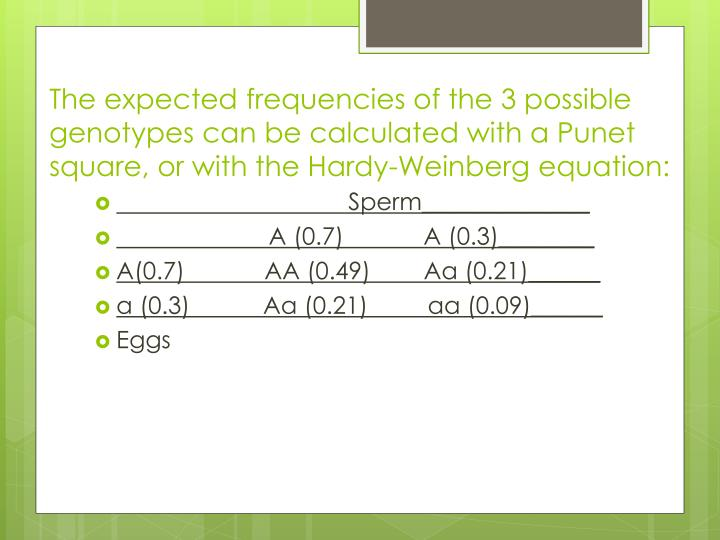 The expected frequencies of the 3 possible genotypes can be calculated with a