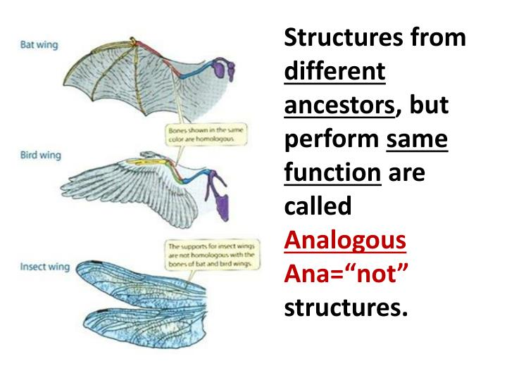 Structures from