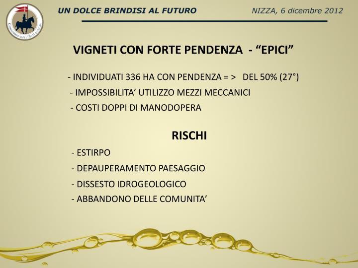 """VIGNETI CON FORTE PENDENZA  - """""""
