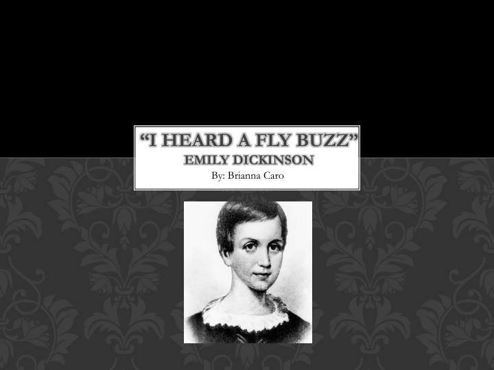 the theme of death in i heard a fly buzz a poem by emily dickinson
