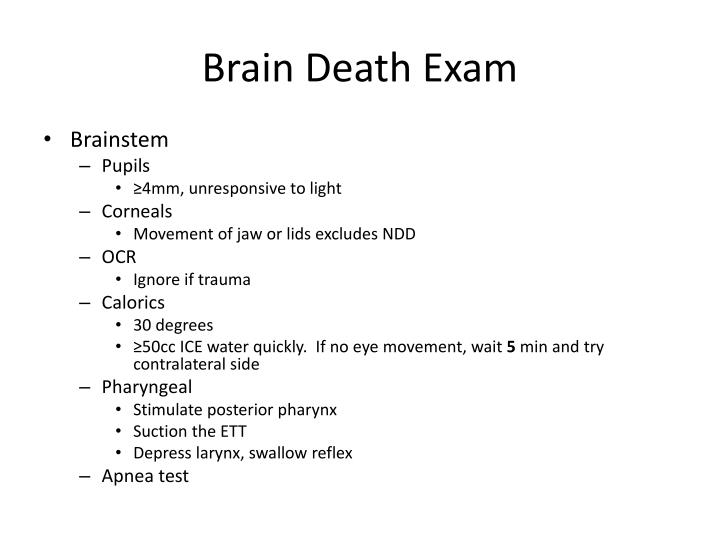Brain Death Exam