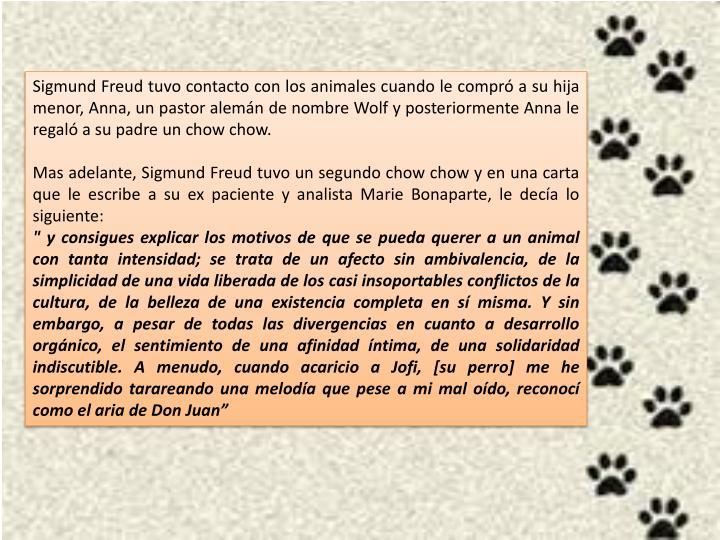 Sigmund Freud tuvo contacto con los animales cuando le compró a su hija menor, Anna, un pastor alemán de nombre Wolf y posteriormente Anna le regaló a su padre un chow chow.