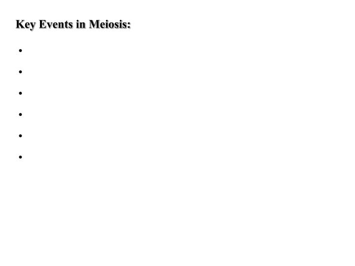 Key Events in Meiosis: