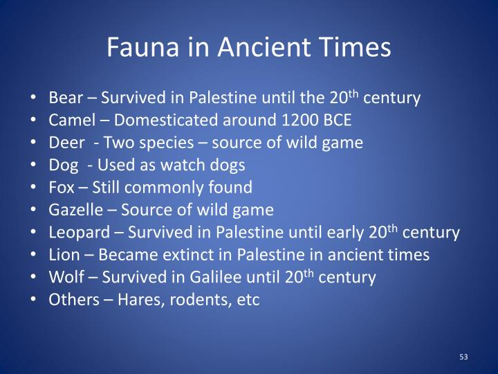Fauna in Ancient Times