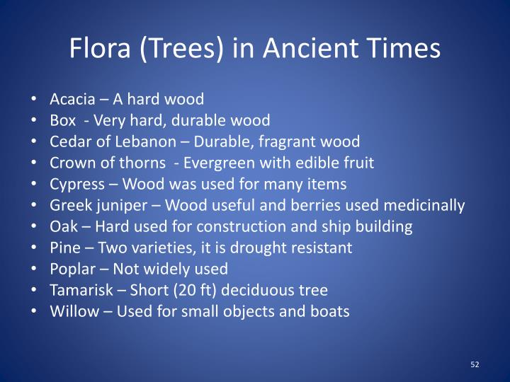 Flora (Trees) in Ancient Times