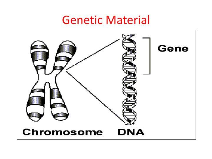 Genetic Material