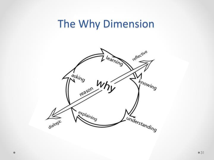 The Why Dimension
