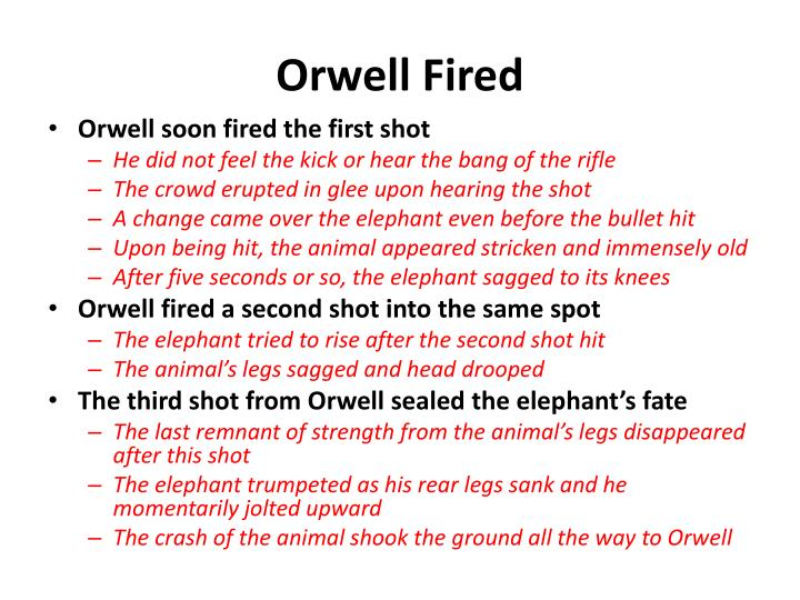Orwell Fired
