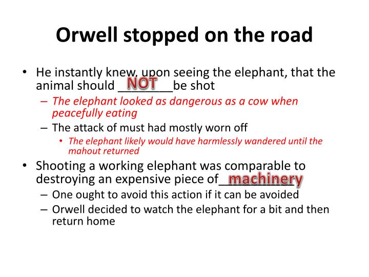 Orwell stopped on the road