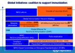 global initiatives coalition to support immunization