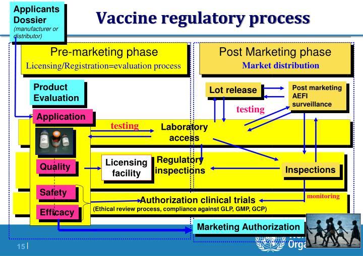 Vaccine regulatory process