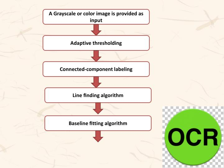 A Grayscale or color image is provided as input