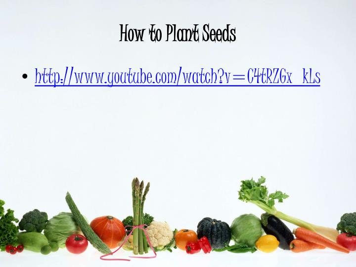How to Plant Seeds
