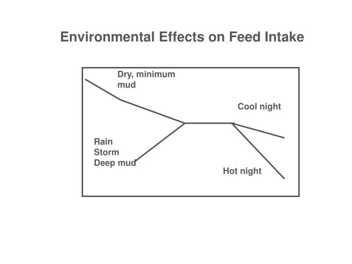Environmental Effects on Feed Intake