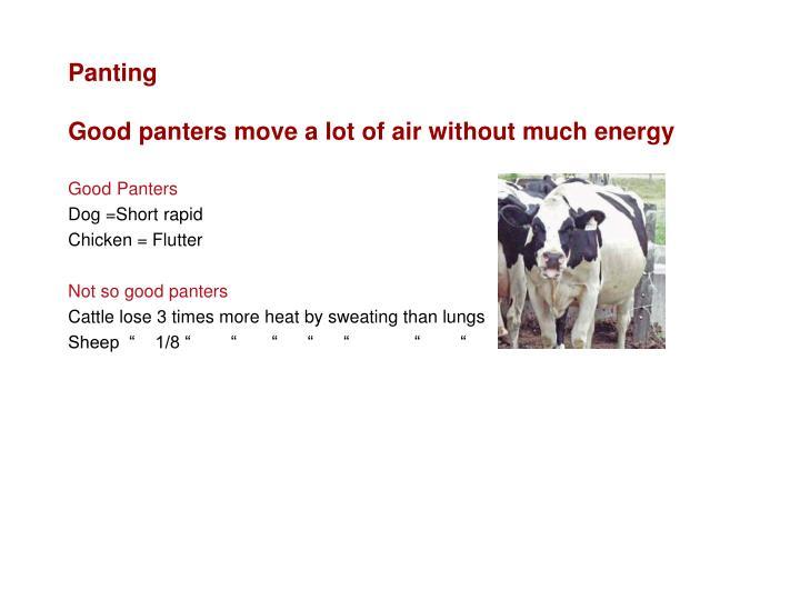 Panting