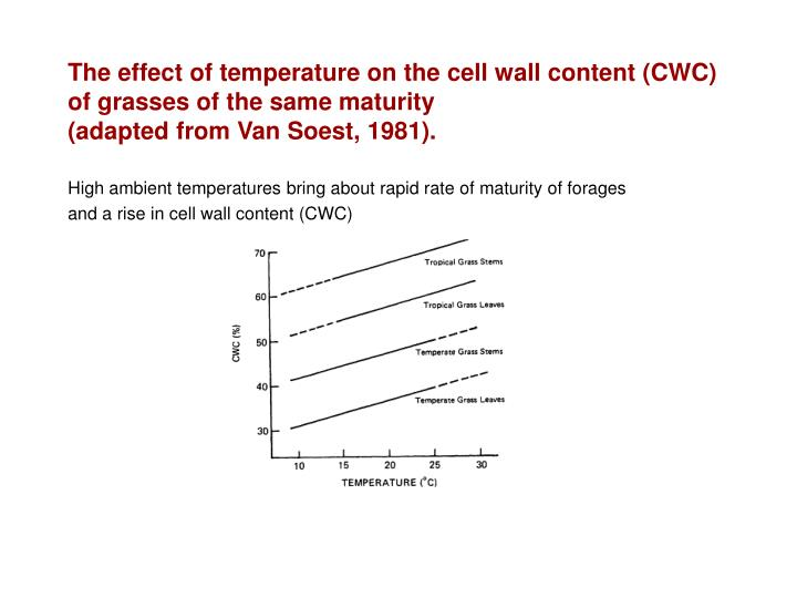 The effect of temperature on the cell wall content (CWC) of grasses of the same maturity