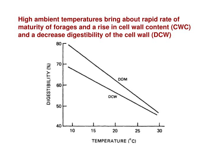 High ambient temperatures bring about rapid rate of maturity of forages and a rise in cell wall content (CWC) and a decrease digestibility of the cell wall (DCW)