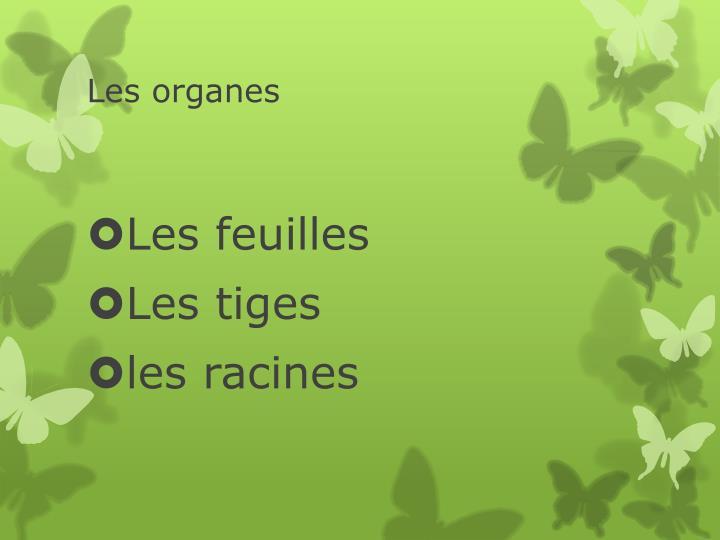 Les organes