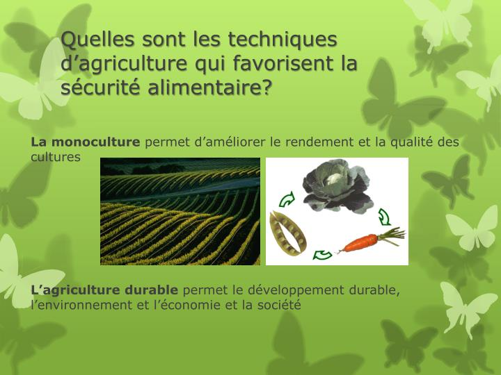 Quelles sont les techniques d'agriculture qui favorisent la sécurité alimentaire?