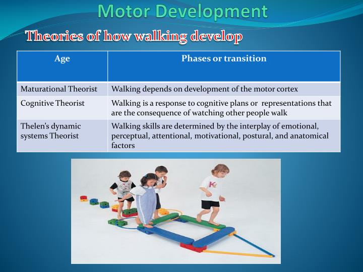 Theories of how walking develop