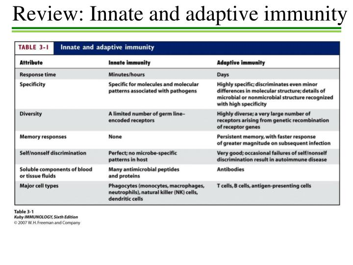 Review: Innate and adaptive immunity