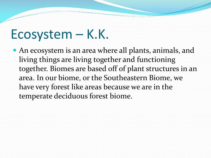 Ecosystem – K.K.