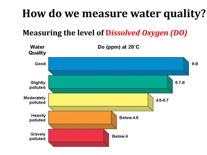 How do we measure water quality?