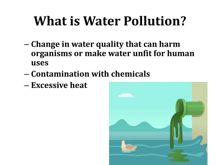 What is Water Pollution?