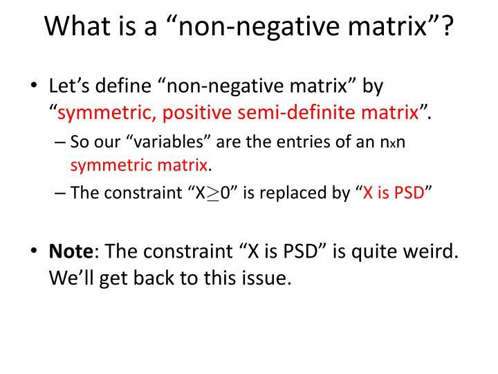 "What is a ""non-negative matrix""?"