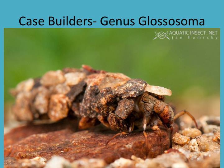Case Builders- Genus