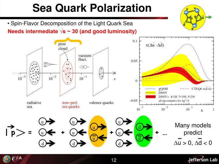 Sea Quark Polarization