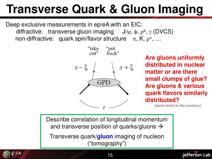 Transverse Quark & Gluon Imaging