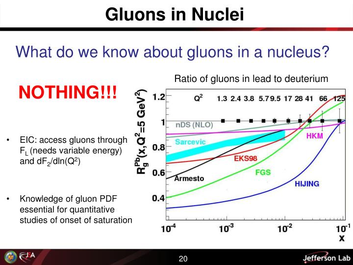 Gluons in Nuclei