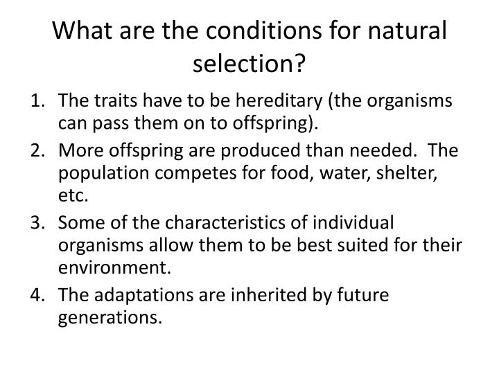 What are the conditions for natural selection?