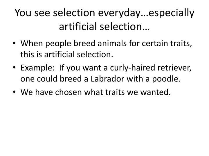 You see selection everyday…especially artificial selection…