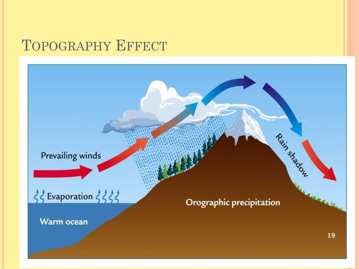 Topography Effect