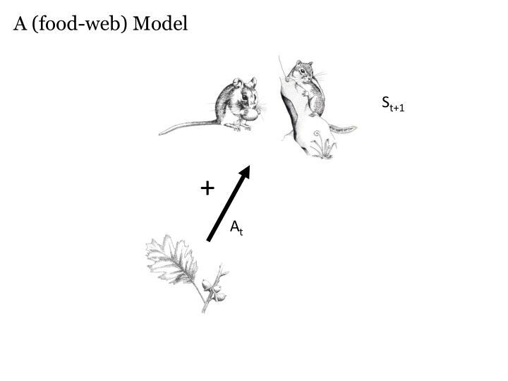 A (food-web) Model